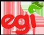 EGI - Euzko Gaztedi