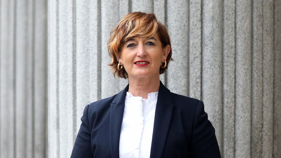 El Grupo Vasco enmienda la Ley de FP para continuar mejorando el texto, con el modelo de éxito vasco como referente